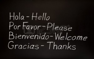 10194947-blackboard-with-spanish-words-and-their-english-translations